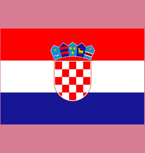 Croatia Travel Insurance logo