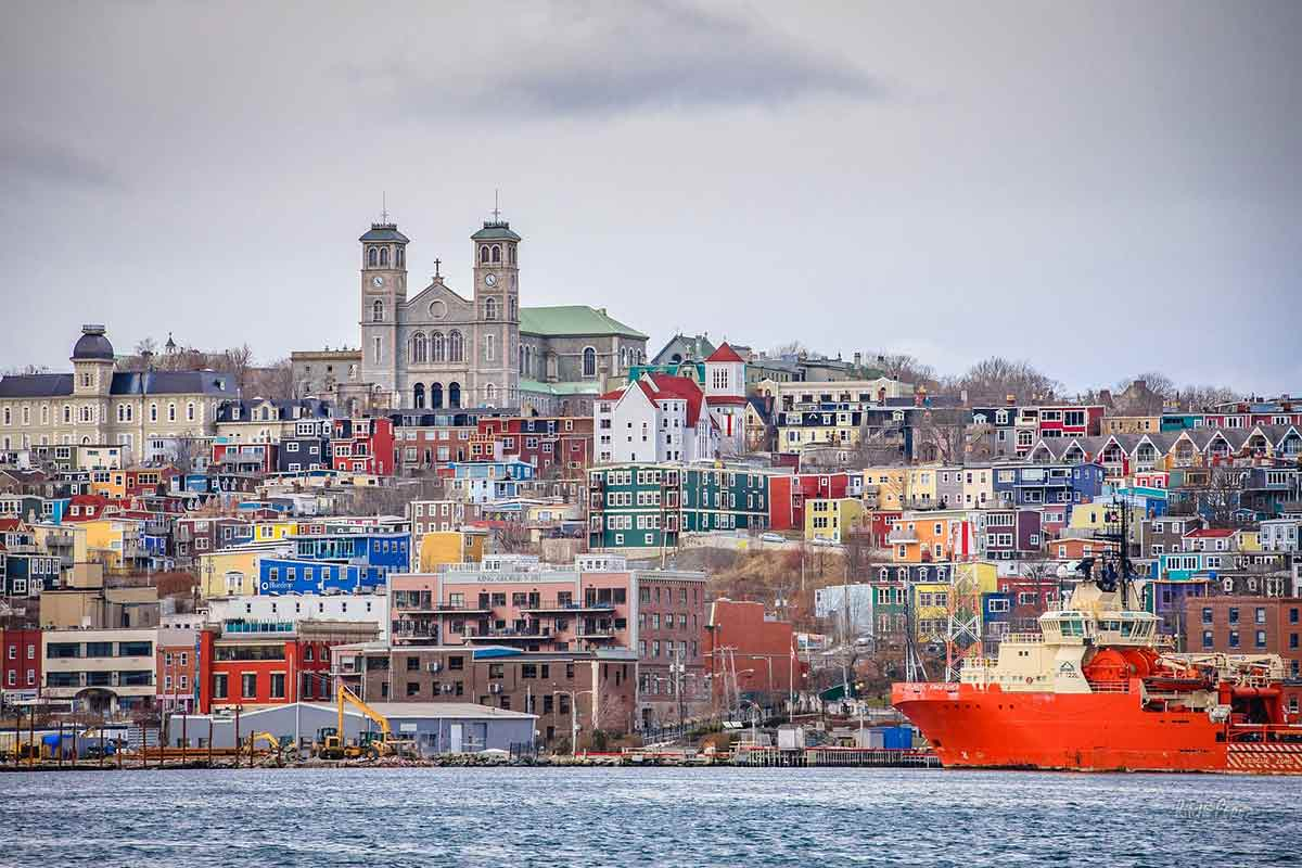 Saint John Newfoundland view