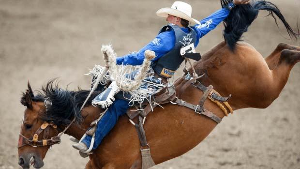 Popular rodeo in Calgary Alberta