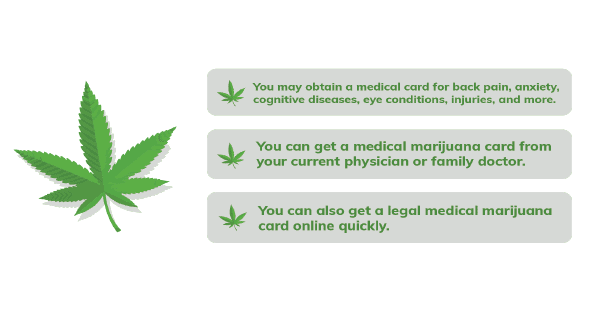 Cannibis Info Image