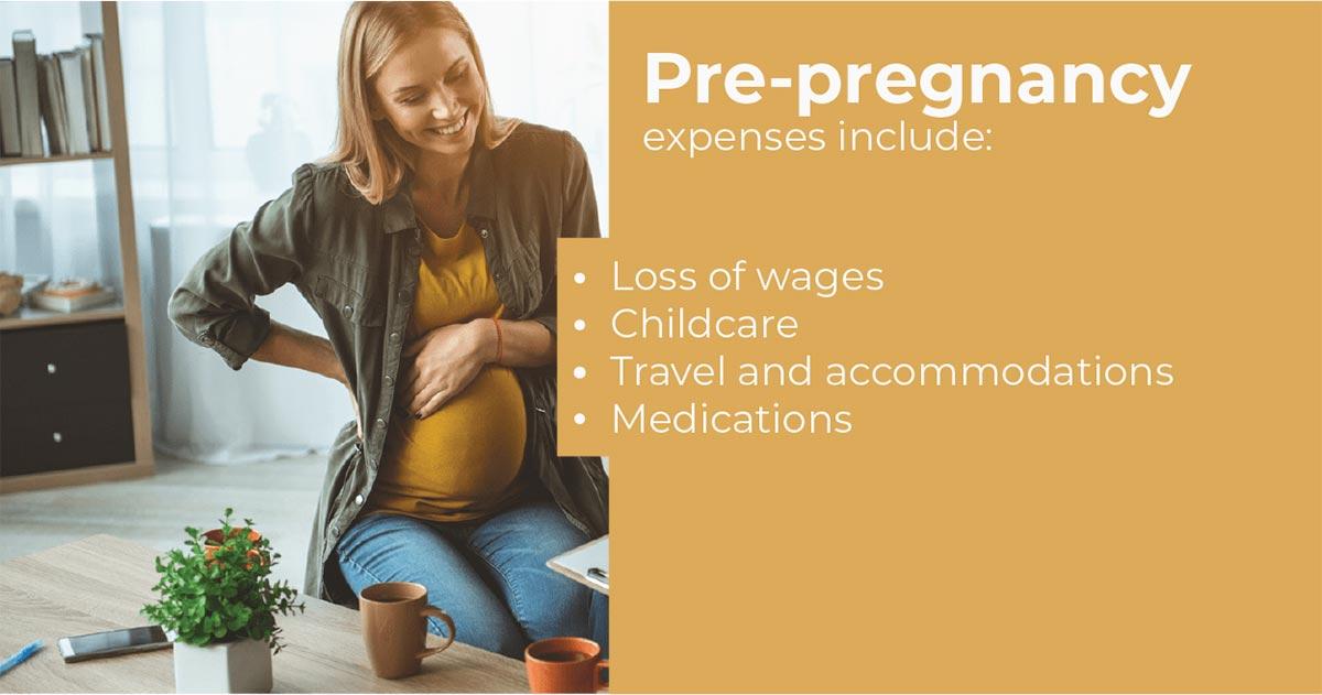 Pre-Pregnancy Expense Image