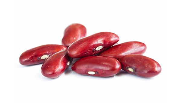 Kidney Bean Size Fetal Development