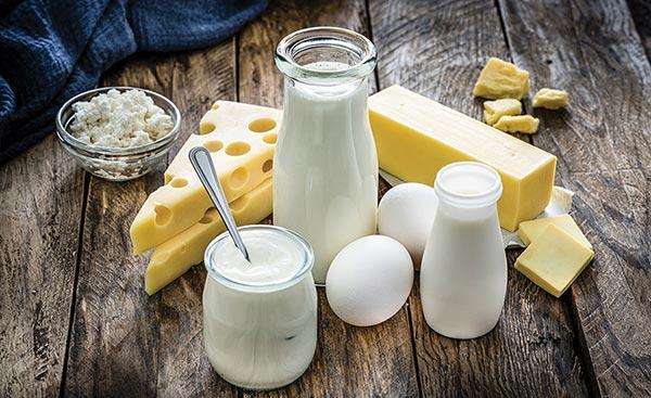 Dairy foods for bone health