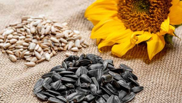 Sunflower Seeds food to prevent blood clots