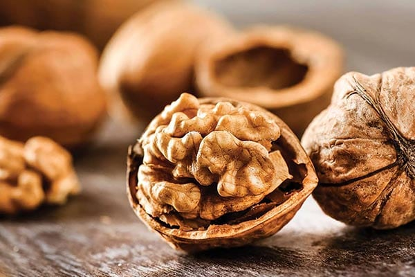 Walnuts food for the stroke